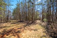 Home for sale: Lot 2 Marian Rd., Dugspur, VA 24325