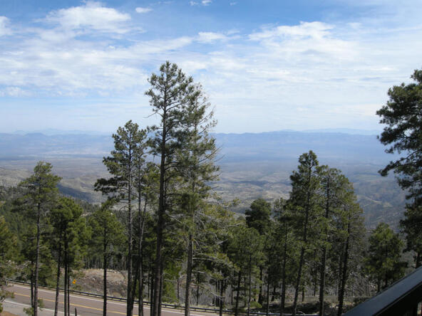 13067 N. Upper Loma Linda N, Mount Lemmon, AZ 85619 Photo 12