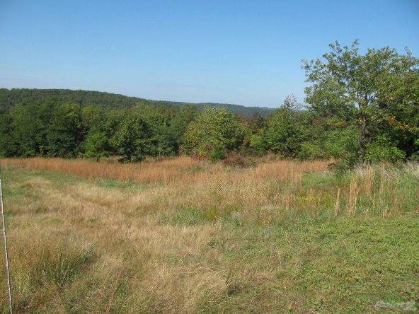 Smith Mountain Rd., 97 Acres, Jasper, AR 72628 Photo 14