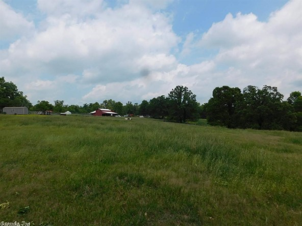 1745 French Town Rd., Camp, AR 72520 Photo 8
