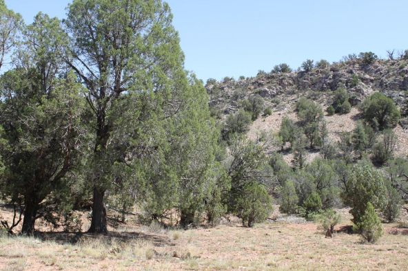 273 Arizona Rd., Ash Fork, AZ 86320 Photo 19