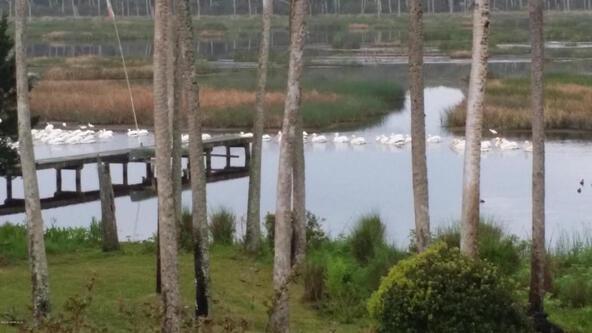 1298 Ponte Vedra Blvd., Ponte Vedra Beach, FL 32082 Photo 52