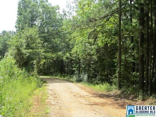 3.91 Acres Thomas Ln., Ashland, AL 36251 Photo 9