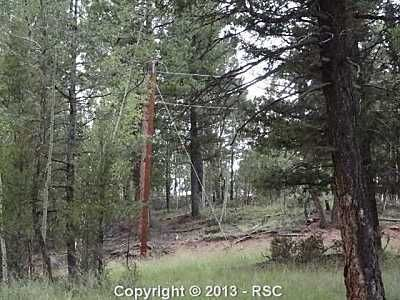 59 Nevada Ln., Florissant, CO 80816 Photo 23