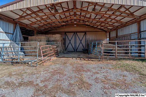 314 Neel School Rd., Danville, AL 35619 Photo 29