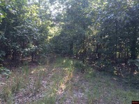 Home for sale: Wrong Way Rd., Yellville, AR 72687