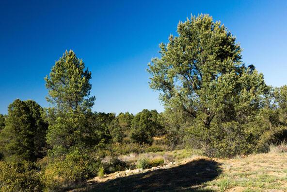 17955 W. Buckhorn Dr., Peeples Valley, AZ 86332 Photo 5