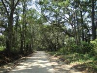 Home for sale: 6 Jenkins Hill Rd., Edisto Island, SC 29438