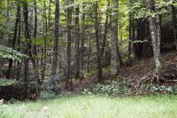 Home for sale: Lot 23 Green Mountain Rd., Sparta, NC 28675
