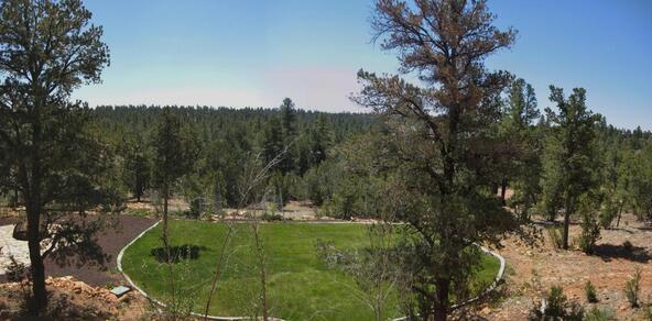 2946 Lodgepole, Overgaard, AZ 85933 Photo 40