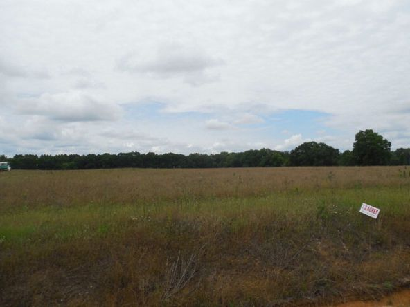 7.8acres Hardy Rd., Rehobeth, AL 36301 Photo 20