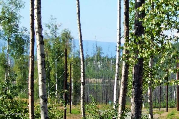 3662 S. Hillrise Cir., Wasilla, AK 99654 Photo 1