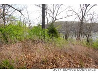 Home for sale: Lot 4 Lake Rd., Rocky Mount, MO 65072