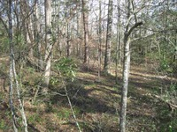 Home for sale: 00 Hopkins Rd., Townville, SC 29689