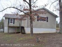 Home for sale: 43 Lela Ave., Sumiton, AL 35148