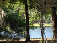 Home for sale: 00 Little Hewitt Ln., Interlachen, FL 32148