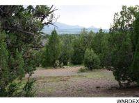 Home for sale: Lot 1345 Antelope Trail, Seligman, AZ 86337