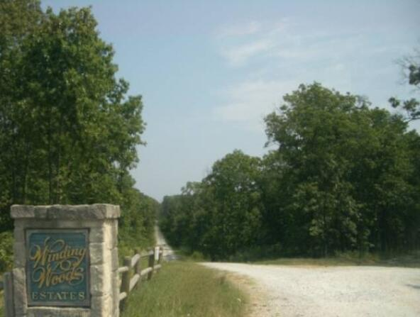 Tract 5 Winding Woods, Clinton, MO 64735 Photo 1