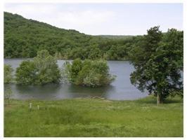 49 Lakeside Dr., Holiday Island, AR 72631 Photo 2