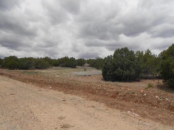 4650 W. Dillon Wash Rd., Prescott, AZ 86305 Photo 15