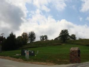 Lot 50 L 50 Whitetail Dr., Walnut Shade, MO 65771 Photo 10