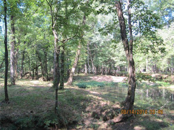 1865 County Rd. 99, Gaylesville, AL 35973 Photo 32