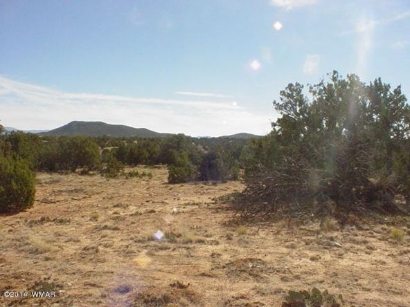 1a N. 8690, Concho, AZ 85924 Photo 60