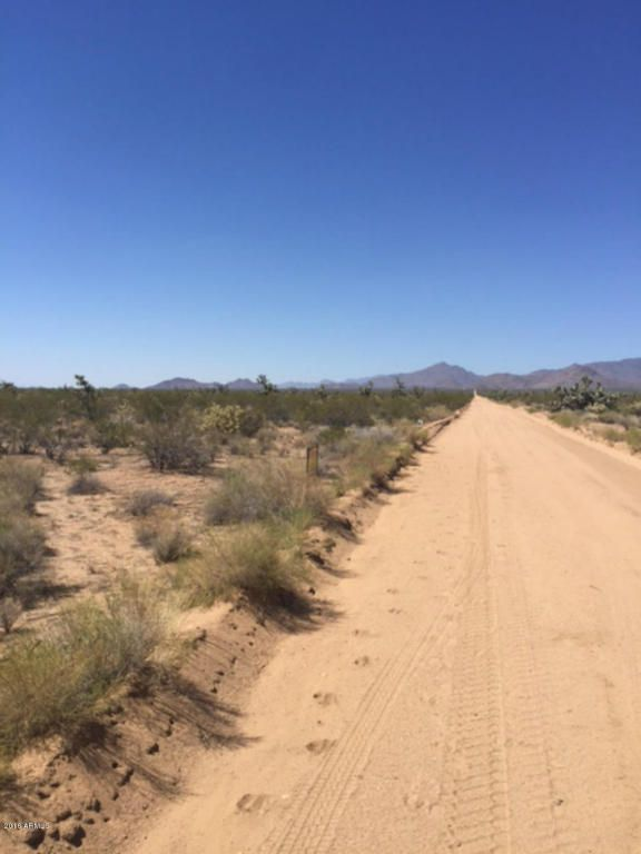 727 Kit Carson Rd., Yucca, AZ 86438 Photo 3