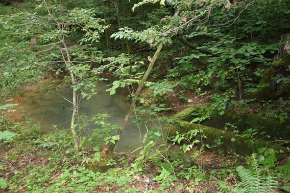 Mount Pleasant Rd., Vonore, TN 37885 Photo 6