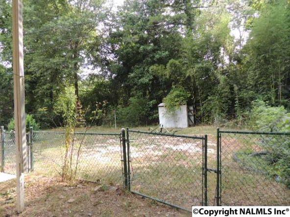 4665 County Rd. 7, Leesburg, AL 35983 Photo 6