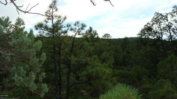 2380 S. Twin Peak Trail, Show Low, AZ 85901 Photo 3