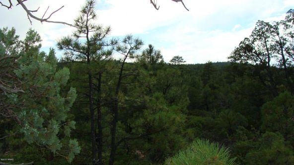 2380 S. Twin Peak Trail, Show Low, AZ 85901 Photo 6