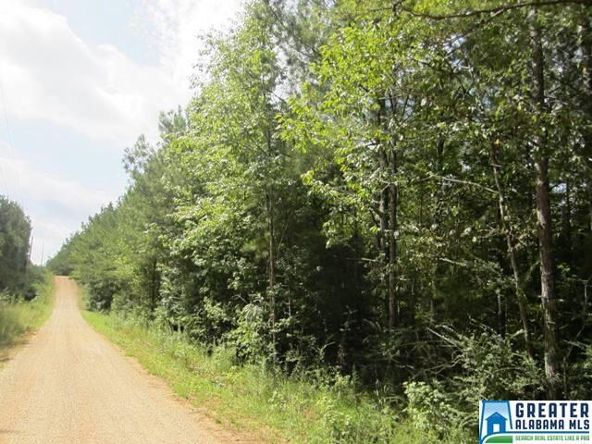 3.77 Acres Thomas Ln., Ashland, AL 36251 Photo 5