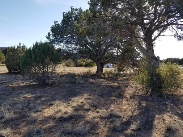13511 N. Warpaint Pl., Prescott, AZ 86305 Photo 2