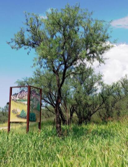 62 Rail X-Ranch Estates, Patagonia, AZ 85624 Photo 63