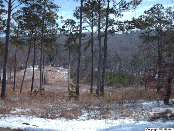 2 County Rd. 67, Langston, AL 35755 Photo 3