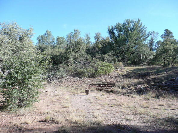 8b N. Chamberlain Trail, Young, AZ 85554 Photo 15