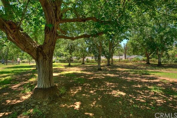 23635 Cone Grove Rd., Red Bluff, CA 96080 Photo 32