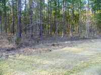 Home for sale: Lot 1 Skyland Farm Rd., Windsor, SC 29853