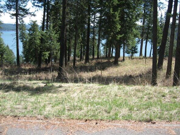 Lot 31b Rock Creek Ridge, Worley, ID 83876 Photo 22