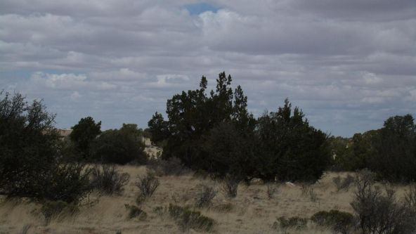 6376 W. Fire Sky Trail, Williams, AZ 86046 Photo 3
