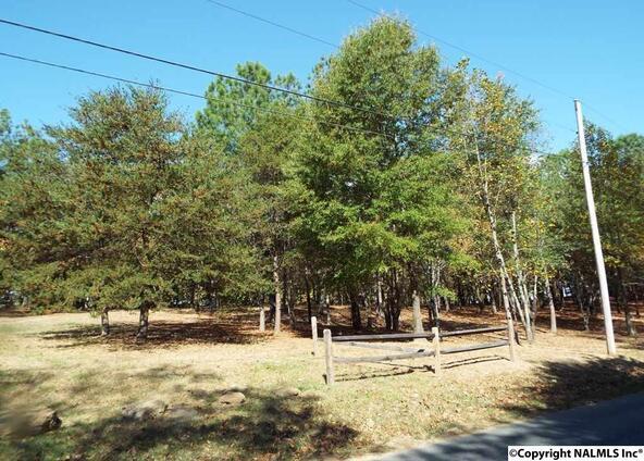 10 S. County Rd. 89, Mentone, AL 35984 Photo 28