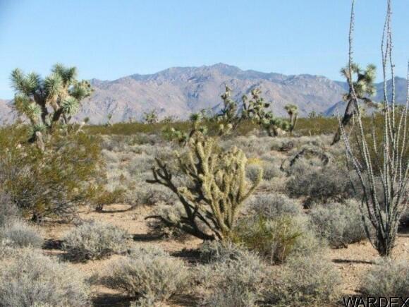 3529-A Arroyo Rd., Yucca, AZ 86438 Photo 13