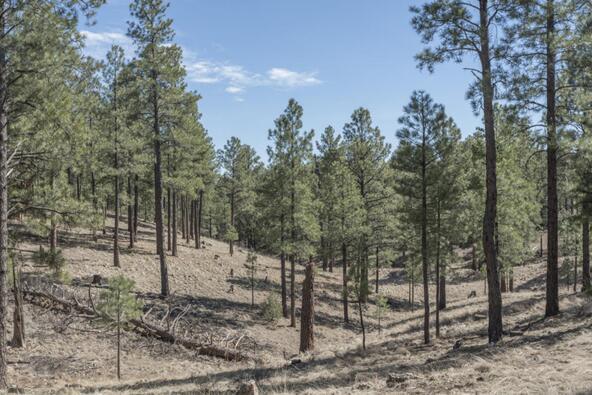 2431 E. del Rae Dr. #181, Flagstaff, AZ 86001 Photo 4
