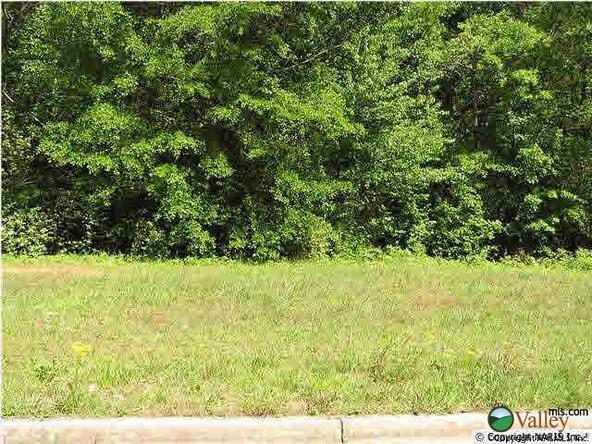 Sommers Ridge Dr., Athens, AL 35611 Photo 3