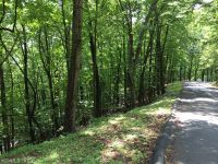 Home for sale: Lot #204 Sourwood, Mills River, NC 28759