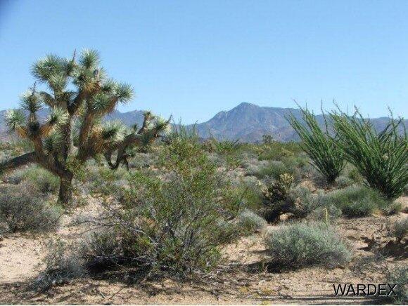 Parc 457 Shadow Ln., Yucca, AZ 86438 Photo 2