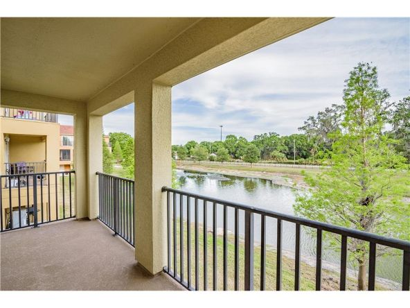 4877 Tuscan Loon Dr., Tampa, FL 33619 Photo 3
