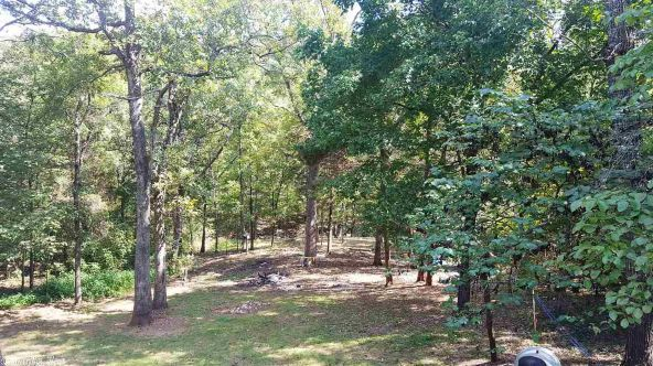 1 Coshise Trace, Cherokee Village, AR 72529 Photo 5