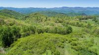 Home for sale: 0 Mcconnell Rd., Scaly Mountain, NC 28775
